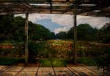 View of the Garden by casechaser, photography->manipulation gallery