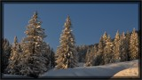 wintertime by ro_and, photography->landscape gallery