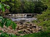 Richmond Falls by biffobear, photography->waterfalls gallery