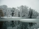 Winter Time at Swan Pond by thatsmef6, Photography->Landscape gallery