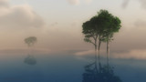 Trees in early morning mist by coram9, Computer->Landscape gallery