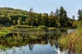 Lakeside3 by biffobear, photography->landscape gallery