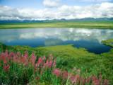 Alaska Range, Alaska by DigitalSnow, Photography->Landscape gallery