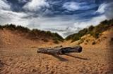 Flotsam by biffobear, photography->shorelines gallery