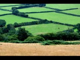 Welsh Countryside by gs208103, Photography->Landscape gallery