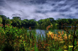 Rainton Meadows by biffobear, photography->water gallery