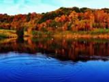 Clockburn Lake by biffobear, photography->shorelines gallery