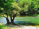 Along Drim by koca, photography->landscape gallery