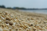 Pebbles on the Mind by imbusion, photography->macro gallery