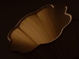 Sepia Lighting by kjh000, Photography->Still life gallery