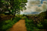 Stainforth Bridleway Textured by biffobear, photography->textures gallery