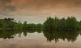 Pond reflections by Genver, photography->shorelines gallery