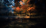 A Morning In October by casechaser, photography->manipulation gallery