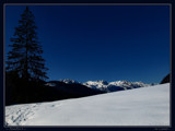 Snowfun 2 by Larser, Photography->Landscape gallery