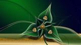 Flower of Eternity 5 by GGFF, illustrations->digital gallery