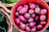 red potato by rainydays, photography->food/drink gallery
