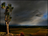 It's Arrived !! by LynEve, Photography->Landscape gallery