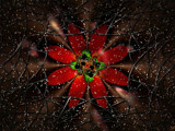 Christmas Window by anawhisp, Abstract->Fractal gallery