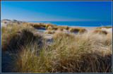 Coastal View (1 of 5) by corngrowth, Photography->Shorelines gallery