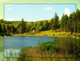 Lakeside 2 by biffobear, photography->landscape gallery