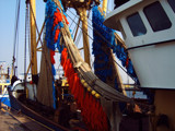 Zeeland Maritime (18), 'Dressed' for Work by corngrowth, Photography->Boats gallery