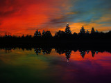 Christmas Colors by busybottle, photography->sunset/rise gallery