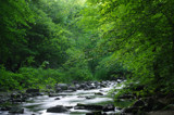 7 Mile Creek 4 by rriesop, photography->landscape gallery