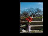 Remembrance by regmar, Photography->City gallery