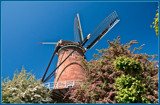 Traditional Windmill 'De Koornbloem' by corngrowth, photography->mills gallery