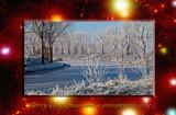 Christmas 2010 by corngrowth, holidays->christmas gallery