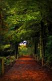 Walk by biffobear, photography->landscape gallery