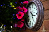 Tick Tock by biffobear, photography->still life gallery