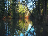 Good Weather Reflections by busybottle, photography->shorelines gallery