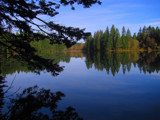 Fallen Leaf Lake by busybottle, photography->shorelines gallery