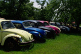 Homeless VW's by mikerkim, Photography->Cars gallery