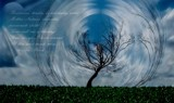~ The Wind ~ by mesmerized, abstract->surrealism gallery