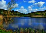 On Derwent Pond by biffobear, photography->water gallery