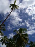 blu sunlight by snoopysaz5, Photography->Shorelines gallery