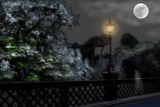 Lady on the bridge by biffobear, photography->manipulation gallery