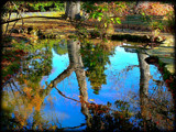 Autumn Reflected by LynEve, Photography->Water gallery
