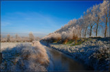 Hoar Frost 3 by corngrowth, photography->landscape gallery