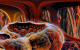 Alien Crib by casechaser, abstract->fractal gallery