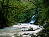 Spring around the Bend by mayne, Photography->Waterfalls gallery