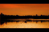 On Golden Pond by JQ, Photography->Sunset/Rise gallery