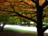 TGP Orange&Green by jojomercury, Photography->Landscape gallery