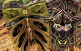 The Dryad and The Woodland Butterfly by casechaser, abstract->fractal gallery