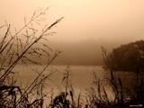Creve Couer Brouillard by jojomercury, Photography->Shorelines gallery