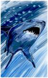 Deep Blue Sea by bfrank, illustrations gallery