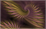 Plumage Plan by Flmngseabass, abstract gallery