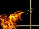 blaze by kodo34, Illustrations->Digital gallery